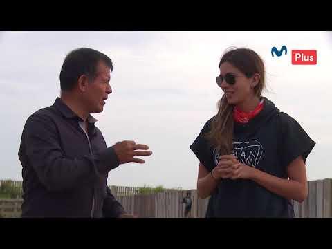Diario de Carretera -  Criadero de aves gigantes